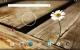 v1.0_home-1.jpg